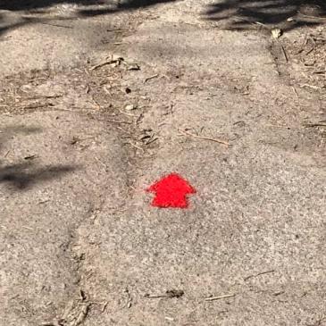 Red Arrows Walk repainted